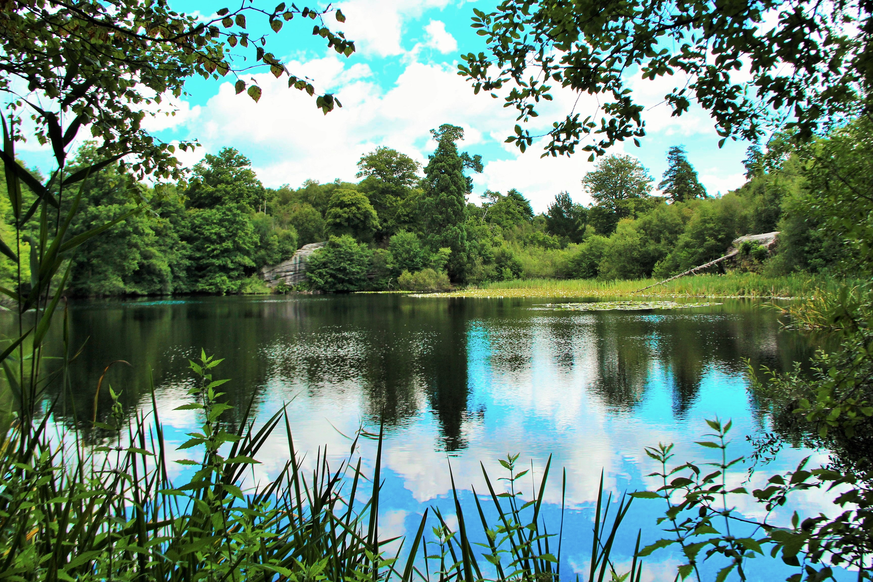 Photo of lake in Lake Wood with summer reflections