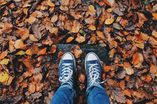 photo of a pair of feet and autumn leaves