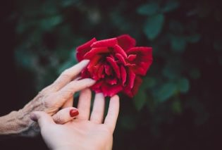 Photo of an elderly hand in a young hand to represent dementia