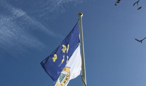 Photograph of the Sussex Flag flying from the Civic Centre flag pole